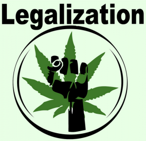Half of Canadians polled support marijuana legalization (Majority believe if legalized, it should be limited to adults and come with a sales tax)