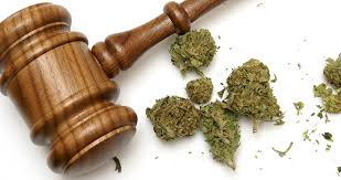 Medical marijuana and the Canadian Law