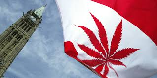 U.S. Government not concerned about legal marijuana in Canada