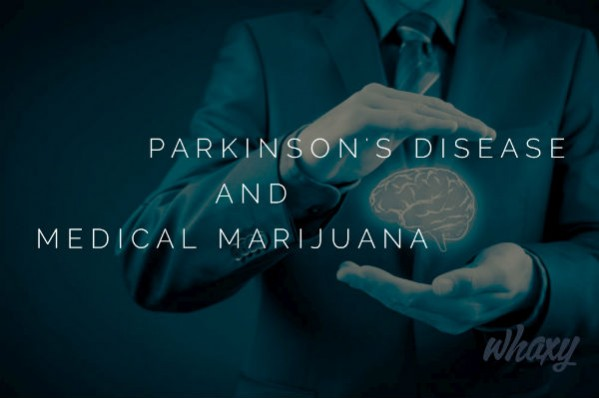 Possible effect of medical marijuana on Parkinson's disease
